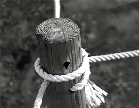 WOOD AND ROPE.JPG by Goomba707