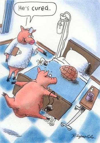 cured ham.jpg by jpb