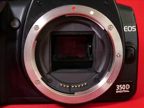 EOS350D_4.jpg by pictureitnow