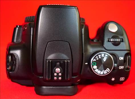 EOS350D_6.jpg by pictureitnow