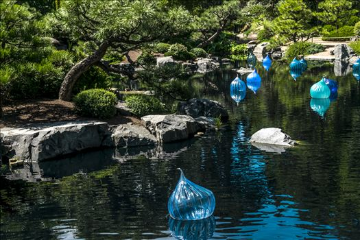 Chihuly Floating Balls.jpg by Dennis Rose