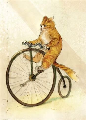 82a944ec157a65c668dd92c69192ddb8--penny-farthing-bicycles.jpg by Frank Bell