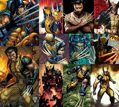 WolverineWorkSHARP.jpg -