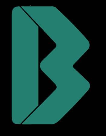 imagen logo bvn.png by eltaji