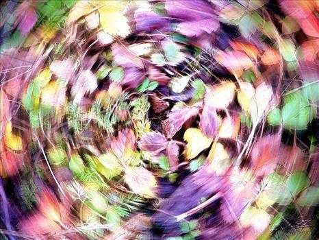 coopermarsh2005entry1.jpg by WPC-10493