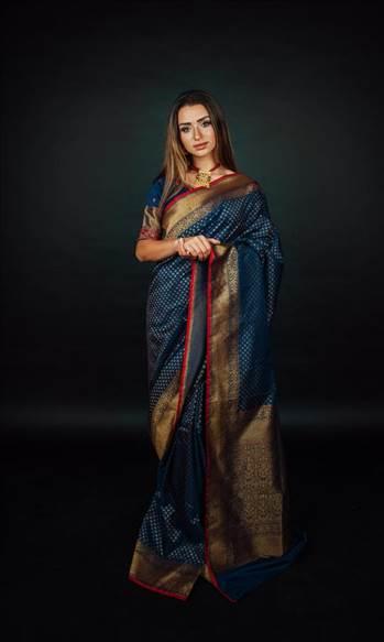 Buy elegant saree - Raastheglobaldesi  by RAASCLOTHING