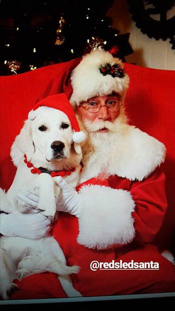 santa and dog.jpg by Christmasthenandnow