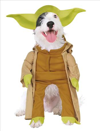Star Wars Yoda Dog Costume 887893.jpg by Thingimijigs