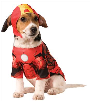 Iron Man Dog Costume 580072.jpg by Thingimijigs