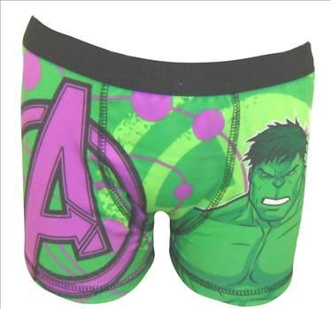 Incredible Hulk Boxer BBOX22 (2).JPG by Thingimijigs