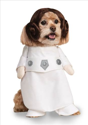 Star Wars Princess Leia dog Costume 887894.jpg by Thingimijigs