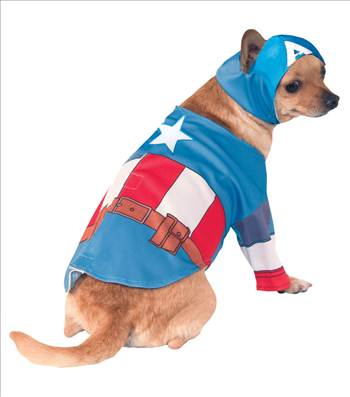 Captain America Dog Costume 580070.jpg by Thingimijigs