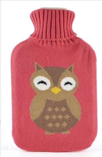 HH0231 Owl Hot Water Bottle.jpg by Thingimijigs