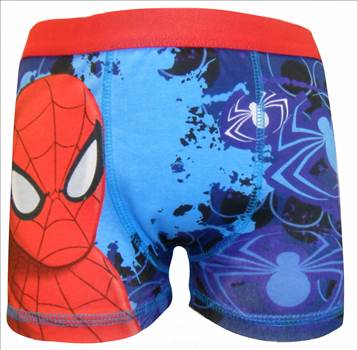 Spiderman Boy's Boxer BBOX18 (3).JPG by Thingimijigs