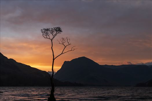 Sunrise at the Lone Tree at Buttermere by Tony Keogh Photography