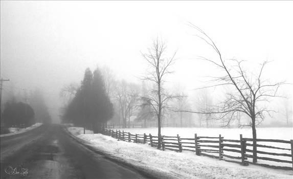 Fog 1 BWedlog.jpg by WPC-156