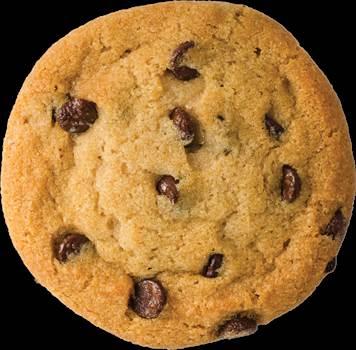 purepng.com-american-cookiecookieamericandelicioussnacksweetyummybiscuit-21525886868xdoig.png by marsham1