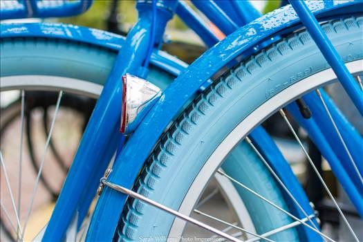 Rainy Blue Bike.jpg by Sarah Williams
