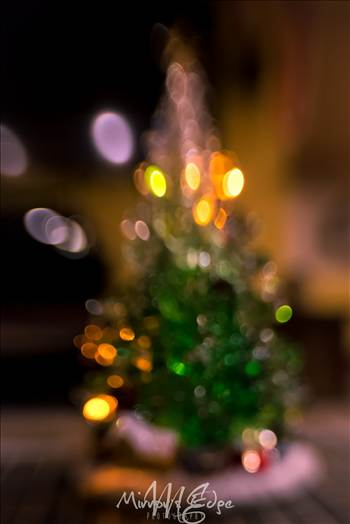 Bokeh Christmas Tree.jpg by Sarah Williams