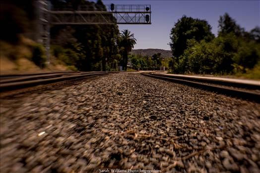 Between the Tracks.jpg - undefined