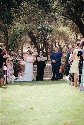 Madison and Stephen Wedding 038 -