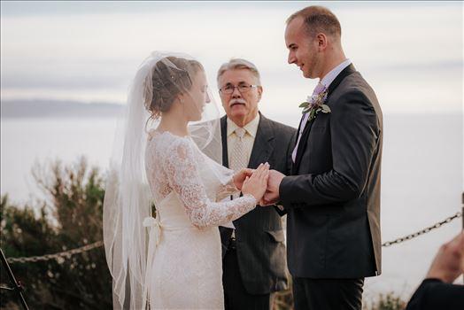 Chadney Wedding 26 by Sarah Williams