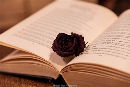 Black Rose in a Book.jpg by Sarah Williams
