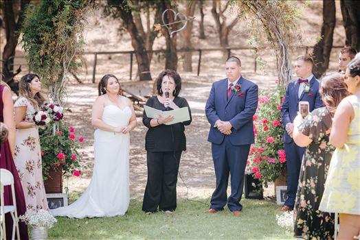 Madison and Stephen Wedding 039 -