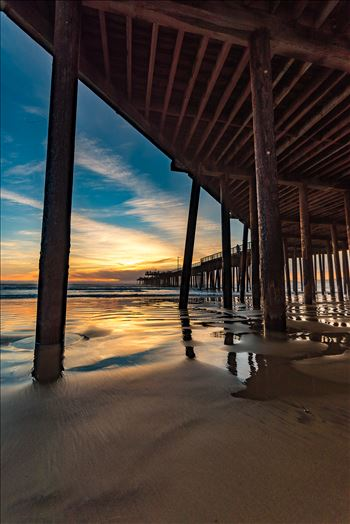 Under Pismo Beach Pier Wide 2 by Sarah Williams