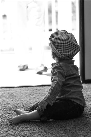 Cute Julien in Hat BW Artistic.jpg by Sarah Williams