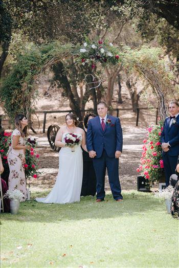 Madison and Stephen Wedding 051 -
