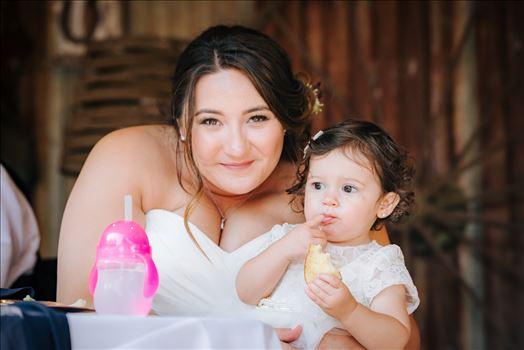 Madison and Stephen Wedding 115 -
