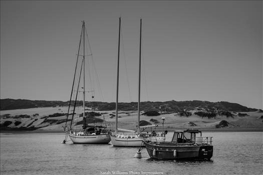 Boats in Morro Bay.jpg by Sarah Williams