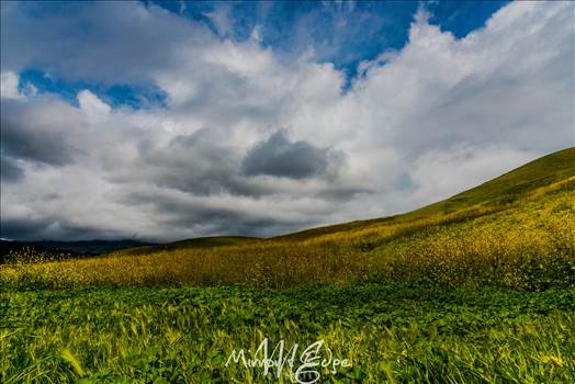 Stormy Skies Rolling Hills (1 of 1).jpg by Sarah Williams