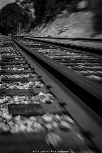 On the Tracks.jpg -