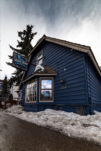 The Blue Stag Breckenridge by Sarah Williams
