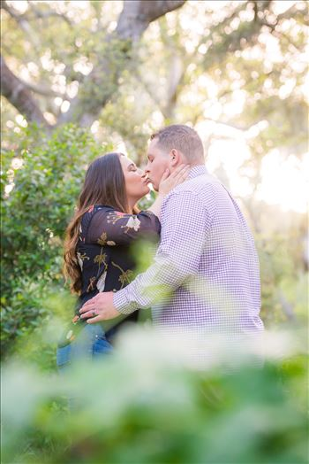 DSC_3616.JPG - Los Osos Oaks Nature Reserve Engagement Photography Session by Mirror\u0027s Edge Photography with gorgeous light