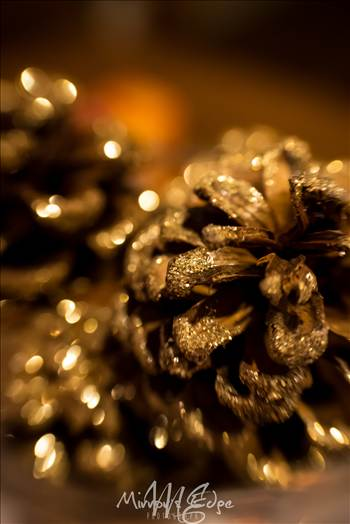 Holiday Glittered Pincone.jpg by Sarah Williams