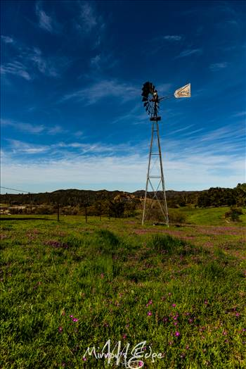 Shell Creek Road Windmill 030116 (1 of 1).jpg - undefined
