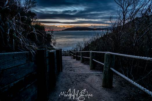 The Cove Path at Night.jpg - undefined