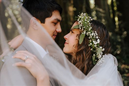 FW-4350.JPG - Mt Madonna wedding in the redwoods outside of Watsonville, California with a romantic and classic vibe by sarah williams of mirror\u0027s edge photography a san luis obispo wedding photographer.  Under the veil