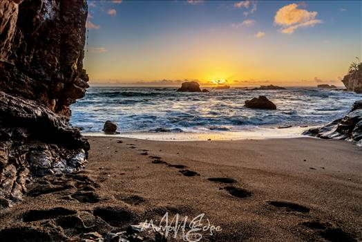 Gazebo Cove Footprints.jpg - undefined