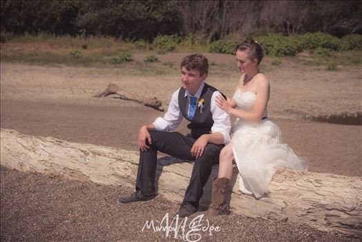Cambria California Wedding Photography 17 by Sarah Williams