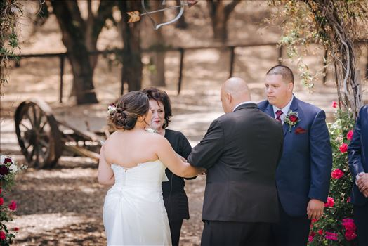 Madison and Stephen Wedding 034 -