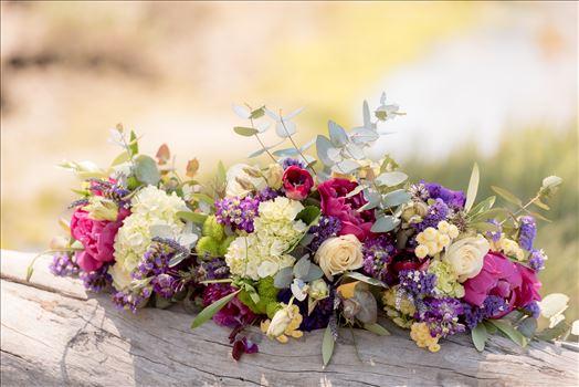 Sweet Springs Nature Preserve Wedding in Los Osos, California San Luis Obispo County