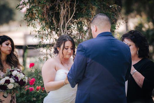 Madison and Stephen Wedding 046 -