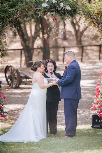 Madison and Stephen Wedding 036 -