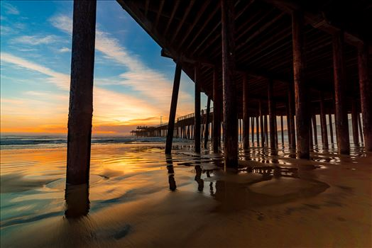 Under Pismo Beach Pier Wide 1 by Sarah Williams