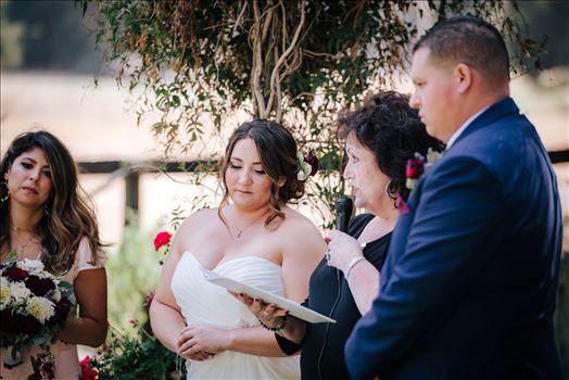 Madison and Stephen Wedding 040 -
