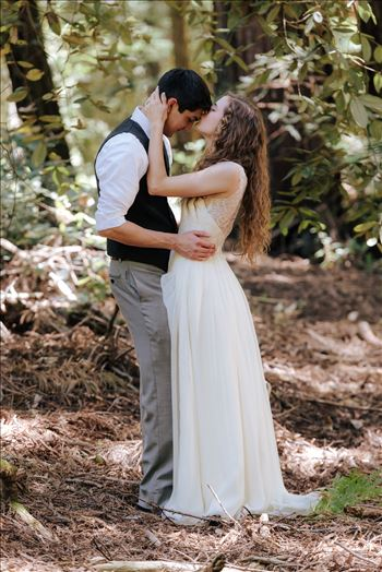 FW-6044.JPG - Mt Madonna wedding in the redwoods outside of Watsonville, California with a romantic and classic vibe by sarah williams of mirror\u0027s edge photography a san luis obispo wedding photographer.  Bride kisses groom in the trees